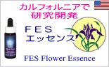 フラワーエッセンスサービス カルフォルニアで研究開発しているFESのフラワーエッセンス